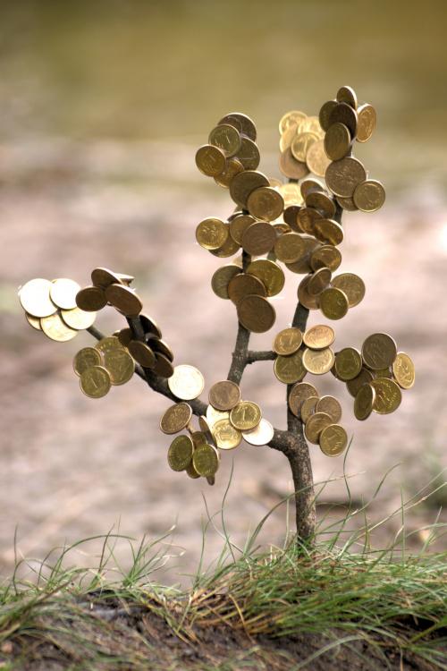 Rozgrosznik złotolistny