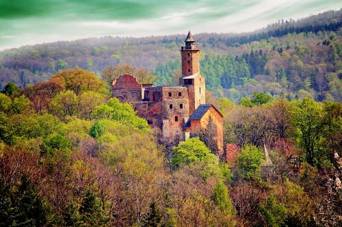 Widok na Zamek Grodno