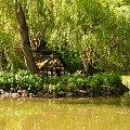Bad Rothenfelde,Rozany Ogrod,domek dla gesi #rozanyogrod #natura #stawy #przyroda #badrothenfelde