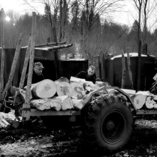 #PstrykCodzienny - smolarze przy rozładunku drewna.