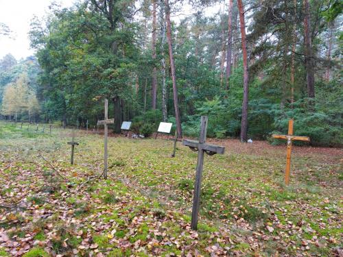 Cmentarz przyszpitalny16