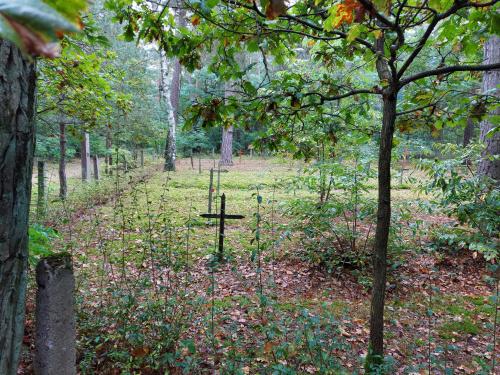 Cmentarz przyszpitalny23