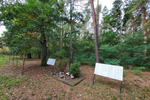 Cmentarz przyszpitalny11