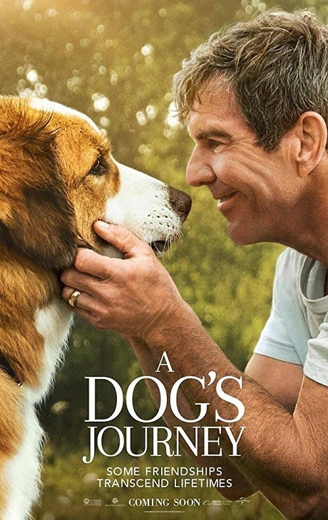 Był sobie pies 2 / A Dogs Journey (2019) PLDUB.1080p.BluRay.x264.DD5.1-FOX / Dubbing PL