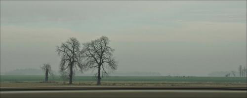 Krajobraz z przydrożną barierką